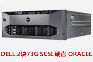 DELL 2块73G SCSI 硬盘 ORACLE