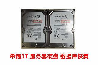合肥潘先生1T希捷服务器硬盘数据恢复成功案例展示